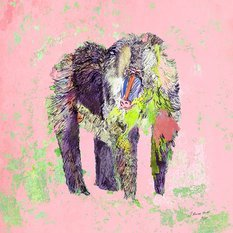 "Jessica Russel Flint Limited Edition Print / ""The Pink Baboon"""