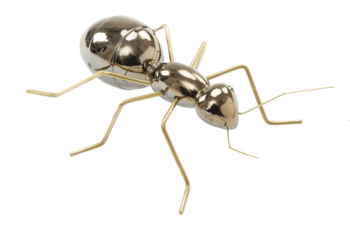 Mambo Unlimited Ideas Fauna Gold Ant