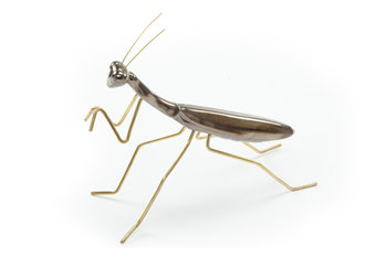 Mambo Unlimited Ideas Fauna Gold Praying Mantis