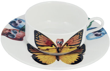 The New English Lepidoptera Croceus Mocha Cup & Saucer