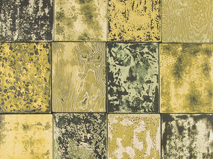 Zimmer & Rohde Shades of Lacquer Wallcovering