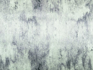 Zimmer & Rohde Surface Wallcovering